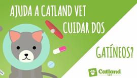 catlandvet
